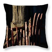 In The Shadow Of The Past Throw Pillow