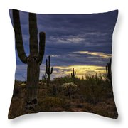 In The Shadow Of The Saguaro  Throw Pillow