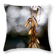 In The Silence Of The Monent Throw Pillow