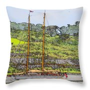 In Tropical Waters Throw Pillow