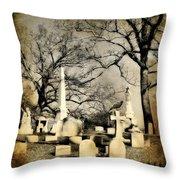 In View Throw Pillow
