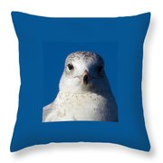 In Your Face Throw Pillow