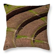 Inca Crop Terraces At Moray Throw Pillow
