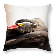 Inca Tern Throw Pillow