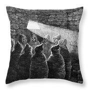Inca Tomb: Chulpa Throw Pillow