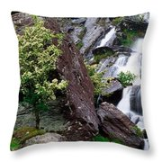 Inchquinn Waterfall, Beara Peninsula Throw Pillow