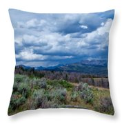 Incoming Storm In Wyoming Throw Pillow