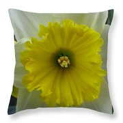 Inconspicuous Throw Pillow