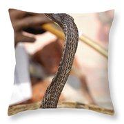 Indian Cobra Throw Pillow