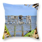 Indian River Roost Throw Pillow