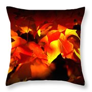 Indian Summer Sparkle Throw Pillow