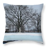Indiana Winter Throw Pillow