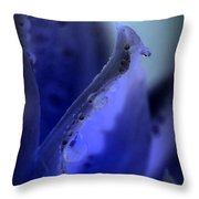 Indigo Dew IIi Throw Pillow