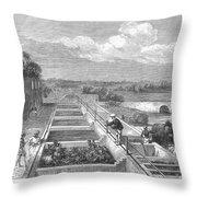 Indigo Manufacture, 1869 Throw Pillow