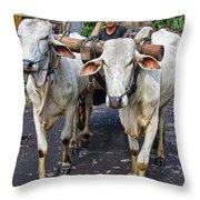 Indonesian Bovine Cart Throw Pillow