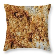 Industrial Corrosion Throw Pillow