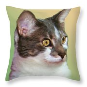 Inquisitive Cat Throw Pillow