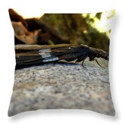 Insect Stripes Throw Pillow