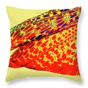 Insect Wing Study Throw Pillow