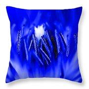 Inside A Flower Throw Pillow