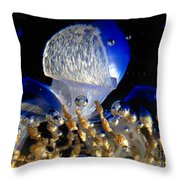 Inside The Crystal 2 Throw Pillow