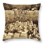 Inside The Historical Brick Kiln Decatur Alabama Usa Throw Pillow