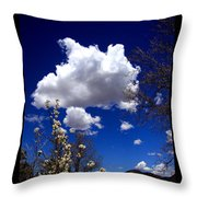 Inside The Mind Of Spring Throw Pillow