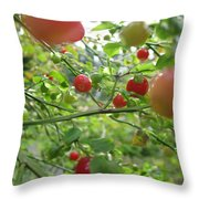 Inside The Red Huckleberry Throw Pillow