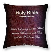 Inspirations 17 John 1 V1 Throw Pillow by Sara  Raber