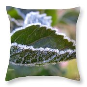 Intensify Throw Pillow