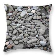 Intertidal Shore Throw Pillow