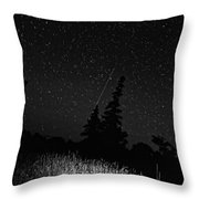 Into The Night Monochrome Throw Pillow