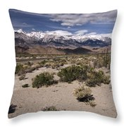 Into The Sierras Throw Pillow