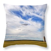 Into The Wide Open Throw Pillow