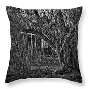 Into The Wilderness Throw Pillow