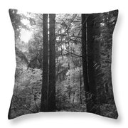 Into The Wood Throw Pillow