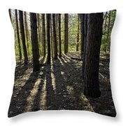 Into The Woods Spnc Michigan Throw Pillow