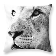 Intrepid Throw Pillow by Elizabeth Hart