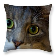 Intrigue Throw Pillow