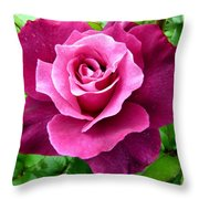 Intrigue Rose Throw Pillow