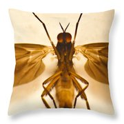 Invader From Mars 1 Throw Pillow