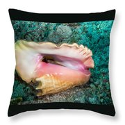 Inverted Conch Throw Pillow