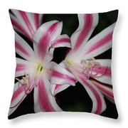 Inviting Lily Throw Pillow