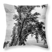 Iowa: Council Bluffs, 1855 Throw Pillow