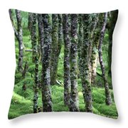 Ireland 0001 Throw Pillow