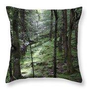Ireland 0002 Throw Pillow