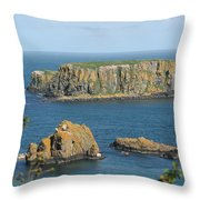 Ireland 0009 Throw Pillow