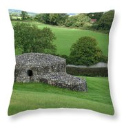 Ireland 0013 Throw Pillow
