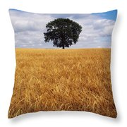 Ireland, Barley Field With Oak Tree Throw Pillow