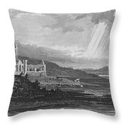Ireland: Dunbrody Abbey Throw Pillow